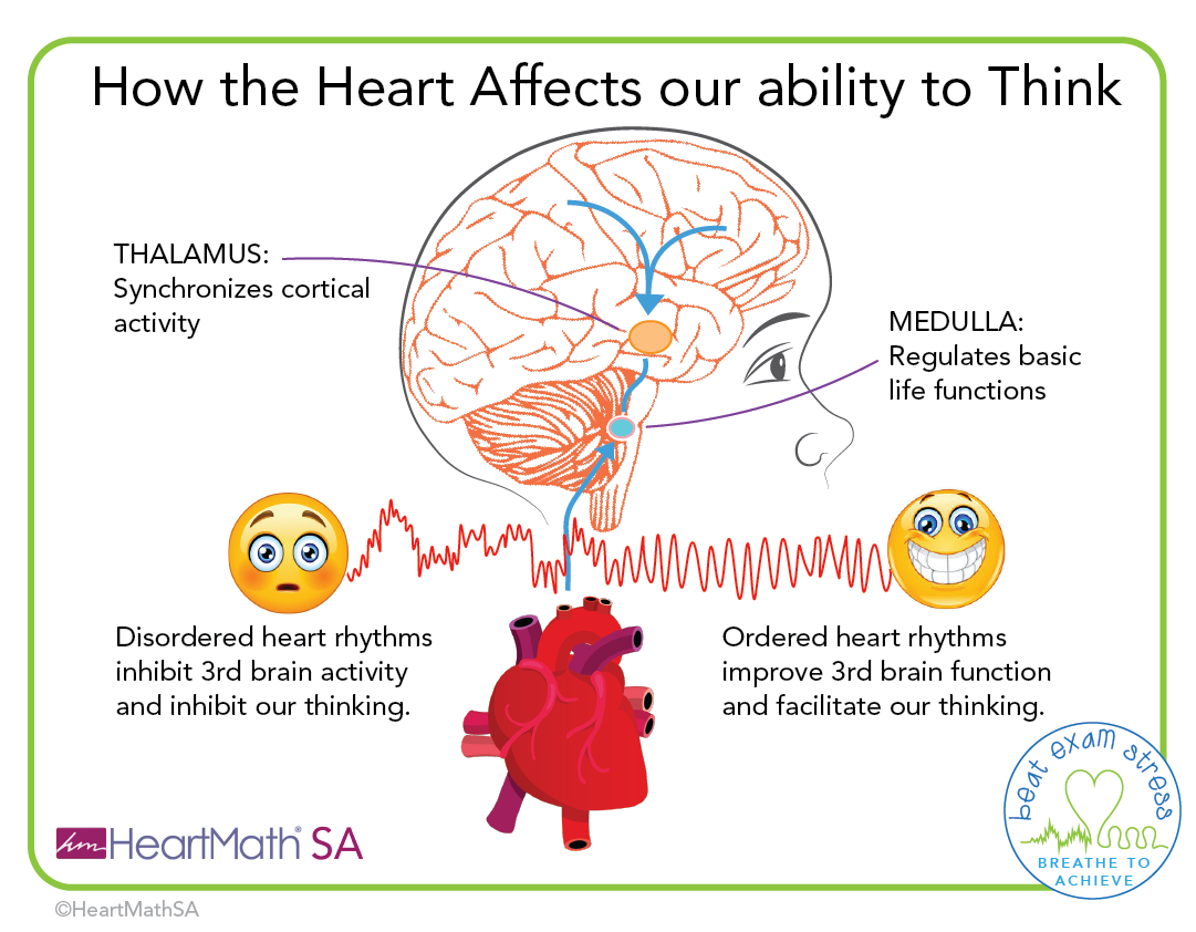 How the Heart affects our ability to think